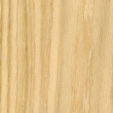 Oak Plywood (2440 x 1220mm)