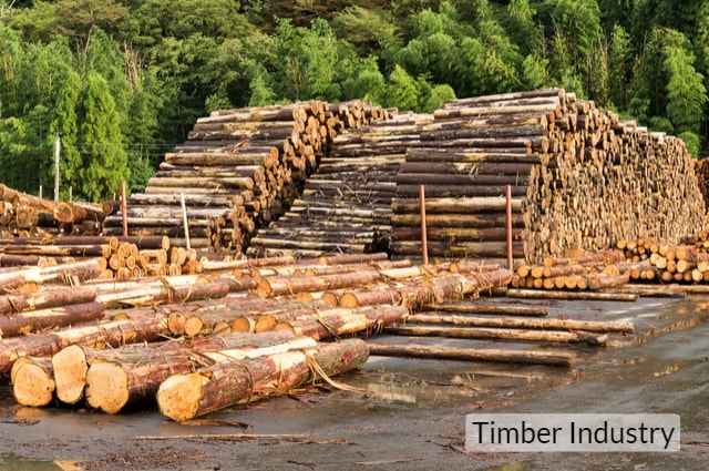 UK Timber industry